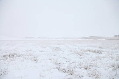 Field Photograph - Cold Winter Scene Of An Open Wheat Field by Lori Andrews