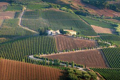 Photograph - Collina Del Vino Siciliano by Giuseppe Buccheri