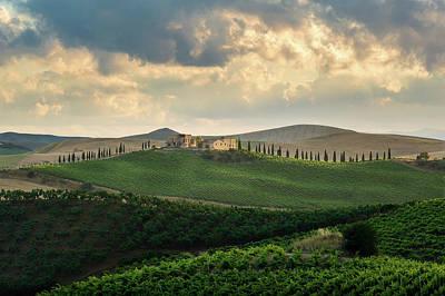 Photograph - Colline Del Vino Siciliano by Giuseppe Buccheri
