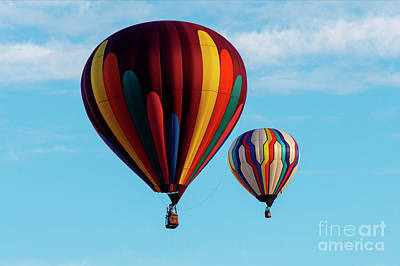 Photograph - Color Aloft by Mike Dawson