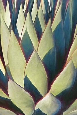 Photograph - Color Geometry I by Leda Robertson