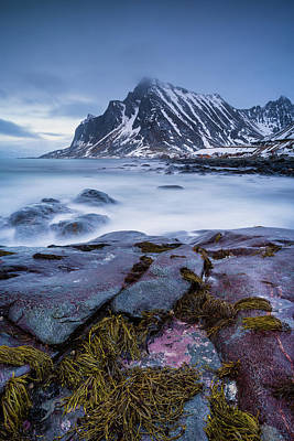 Photograph - Color On The Rocks by Michael Blanchette