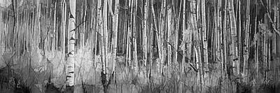 Art Print featuring the photograph Colorado Autumn Wonder Panorama In Black And White  by OLena Art Brand