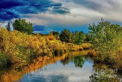 Photograph - Colorado Red Tail Autumn by Jon Burch Photography