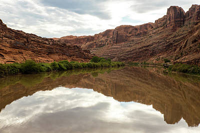 Photograph - Colorado River Reflections by Tom Cochran