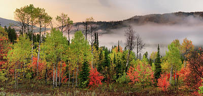 Photograph - Colorful Autumn Morning by Leland D Howard