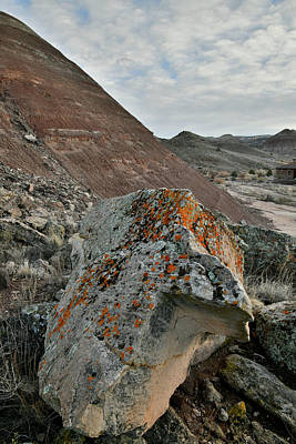 Photograph - Colorful Boulder At Sunset In Ruby Mountain Wash by Ray Mathis