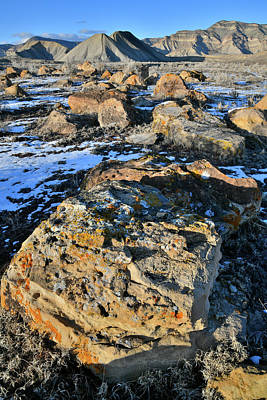 Photograph - Colorful Boulder Field Of Book Cliffs by Ray Mathis