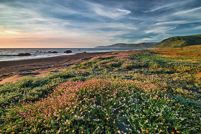 Photograph - Colorful Coastline by Leland D Howard