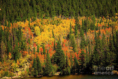Photograph - Colorful Colorado Fall by Jon Burch Photography