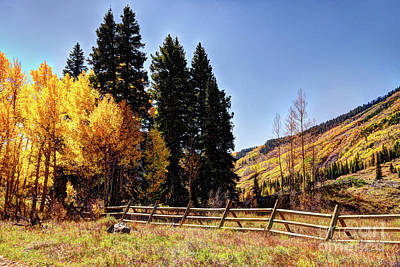 Photograph - Colorful Colorado In Autumn by Jean Hutchison