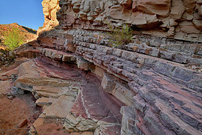 Photograph - Colorful Cove In Bell Canyon In Utah by Ray Mathis