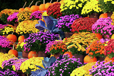 Caravaggio - Colorful flowers and pumpkins by Celine Bisson