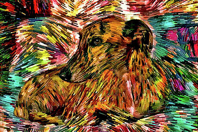 Digital Art - Colorful Greyhound Art by Peggy Collins