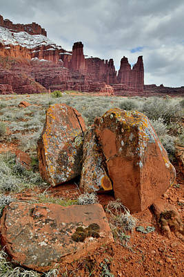 Photograph - Colorful Lichen Covered Boulders At Fisher Towers by Ray Mathis