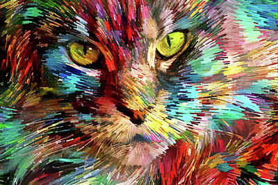 Digital Art - Colorful Maine Coon Cat by Peggy Collins
