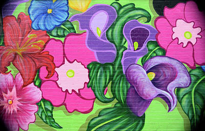 Photograph - Colorful Mural by Karen Harrison