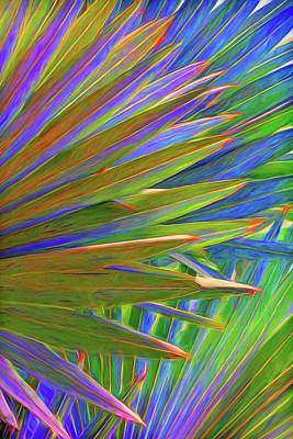 Photograph - Colorful Palm Frond Abstract by HH Photography of Florida