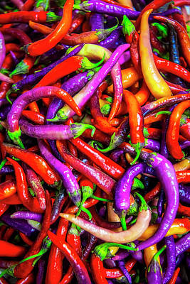 Photograph - Colorful Peppers by Garry Gay