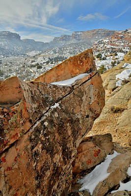 Photograph - Colorful Rocks In Colorado National Monument by Ray Mathis