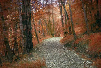Photograph - Colorful Rocky Path by Bill Posner