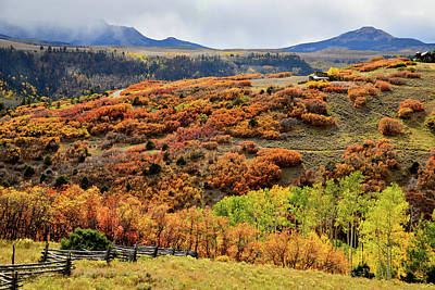 Photograph - Colorful Scrub Oak And Aspen Along Last Dollar Road by Ray Mathis