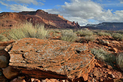 Photograph - Colorful Slab And Fisher Towers In Castle Valley Utah by Ray Mathis