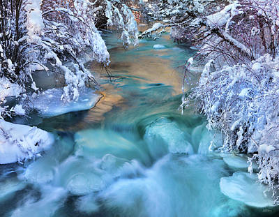 Photograph - Colorful Winter Textures by Leland D Howard
