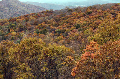 Photograph - Colors Of Shenandoah by Travis Rogers