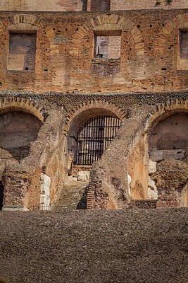 Movies Star Paintings - Colosseum Doors and Windows 2 by Murray Pellowe