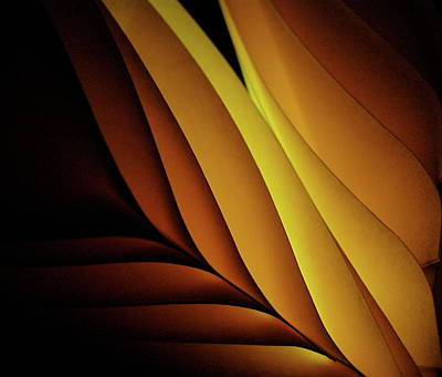 Photograph - Coloured Paper Abstract by Photo Ephemera