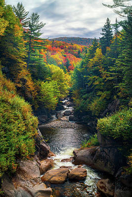 Photograph - Colours Of Pemigewasset by James Billings