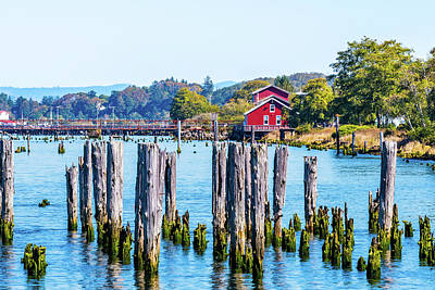 Photograph - Columbia River In Astoria, Oregon by Debbie Ann Powell