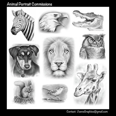 Drawings Royalty Free Images - Commissioned Animal Portraits Royalty-Free Image by Greg Joens