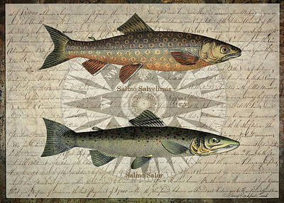 Digital Art - Compass And Fish by Terry Kirkland Cook