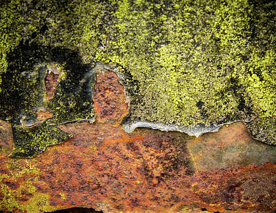 Photograph - Complicated Rust by Jean Noren
