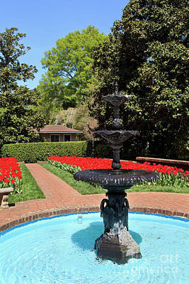 Photograph - Concord Memorial Garden In The Spring With Tulips Blooming by Jill Lang