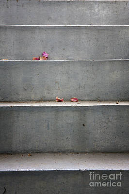 Photograph - Concrete Stairs With Leaves by Jan Brons