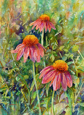 Modern Feathers Art - Coneflower Trio by Hailey E Herrera