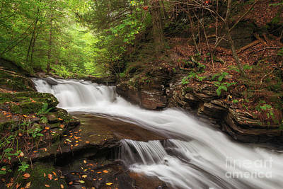 Photograph - Conestoga Falls by Sharon Seaward