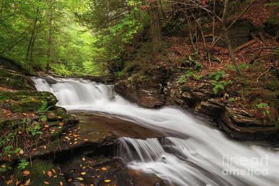 Photograph - Conestoga Falls by Sharon Seaward