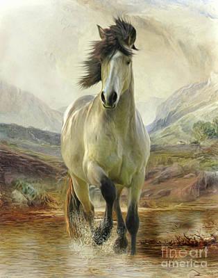 Digital Art - Connemara Pony Of The Moors by Trudi Simmonds