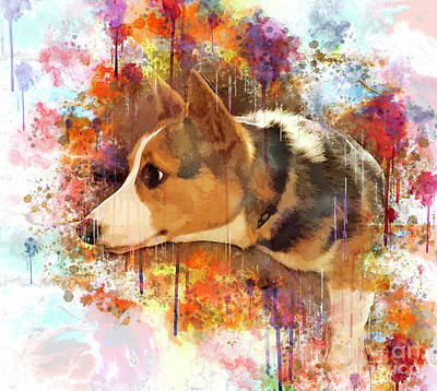 Digital Art - Contented Corgi by Kathy Kelly