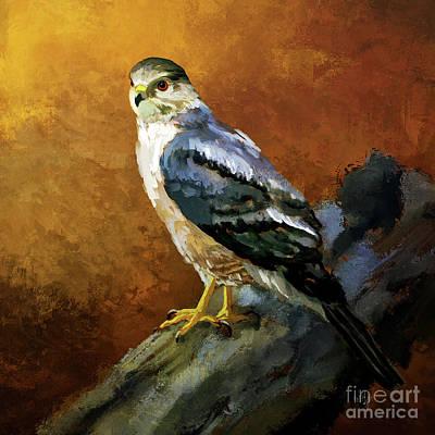 Digital Art - Cooper's Hawk by Lois Bryan