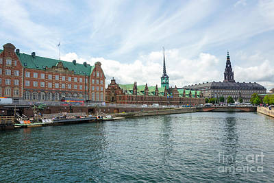 Bear Photography -  Copenhagens Old Town by Wdnet Studio