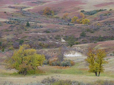 Photograph - Copper Hills Autumn by Cris Fulton