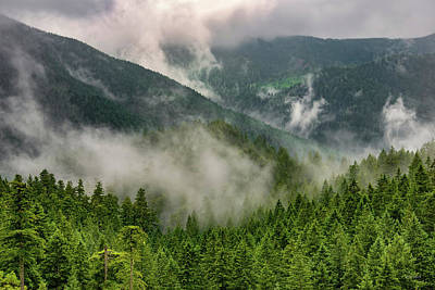 Photograph - Copper Salmon Wilderness 2 by Leland D Howard