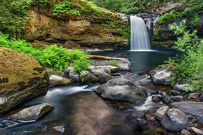 Photograph - Coquille River Waterfall by Leland D Howard