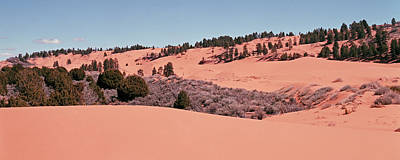 Photograph - Coral  Pink Panorama by Tom Daniel