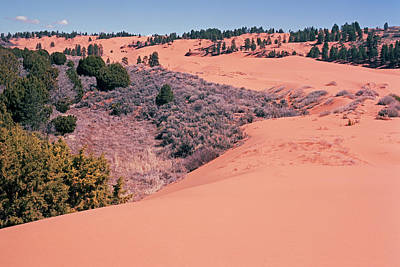 Photograph - Coral  Pink Sand Dunes by Tom Daniel
